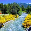 Bariloche Campings